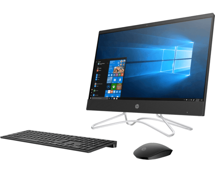 HP All in One 22 C0041D